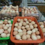 Насколько вредны и полезны яйца цесарок