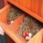 Как сделать гнезда для несушек своими руками