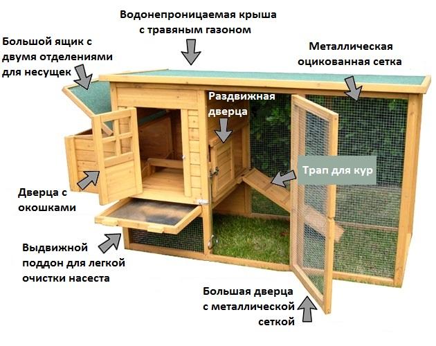 Подготовительные работы постройки курятника