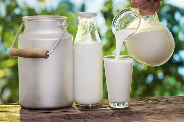 Жирность молока у коровы описание