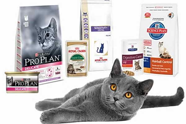 Для котов корма