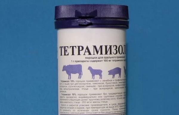 Тетрамизол 10 — инструкция по применению для свиней