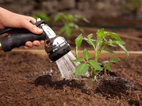 Удобрение на основе азота