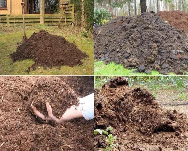 Подготовку почвы под помидоры