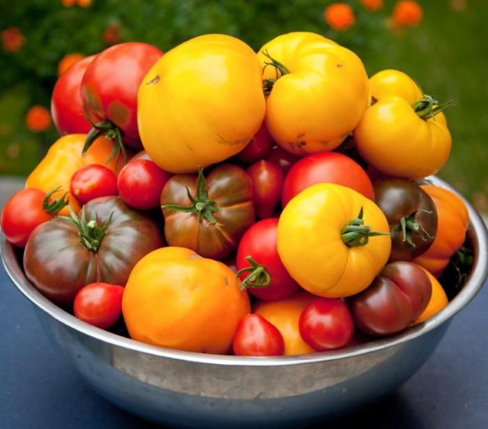 Окраска томатов