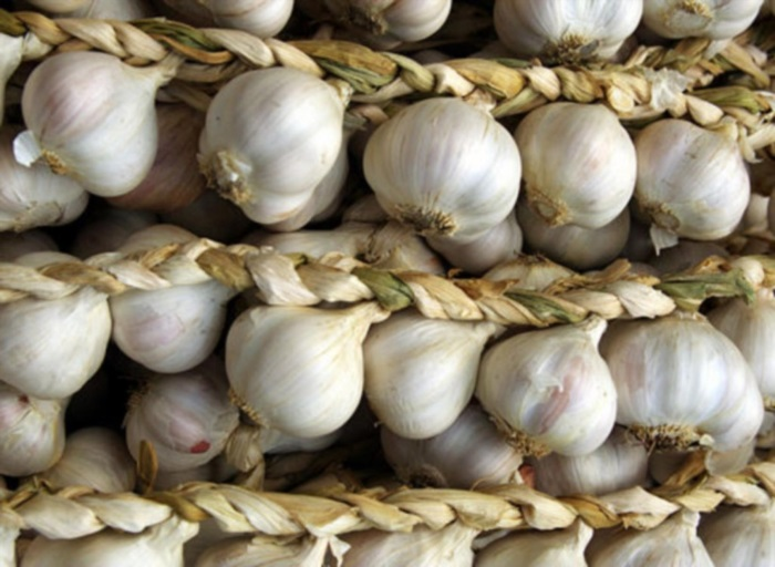 Как убрать выращенный урожай чеснока