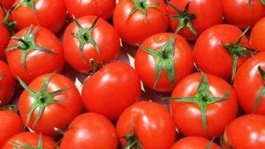 Несколько способов сохранить томаты
