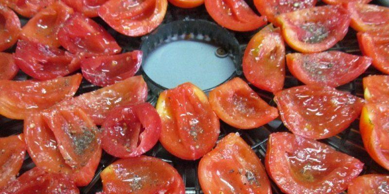 Вяленые томаты в сушилке