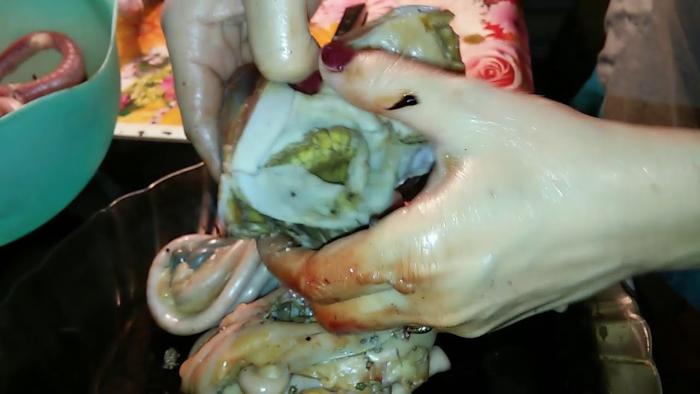 Как чистить заполненные желудки