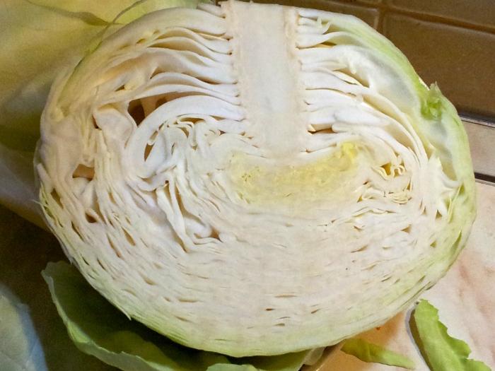 Капуста квашеная на зиму очень вкусная и хрустящая: домашний рецепт засолки в кастрюле или ведре
